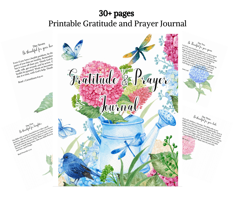 gratitude and prayer journal with butterflies and flowers.