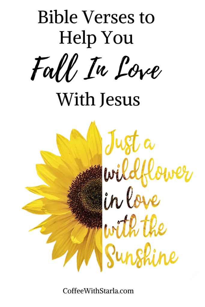 Falling In Love With Jesus, Bible verses to help you fall in love with Jesus, sunflower on white background